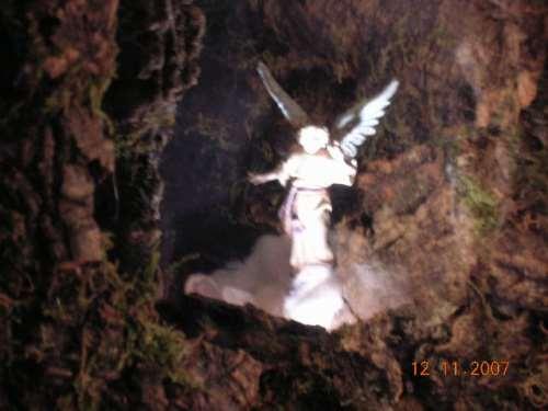 APARECE EL ANGEL